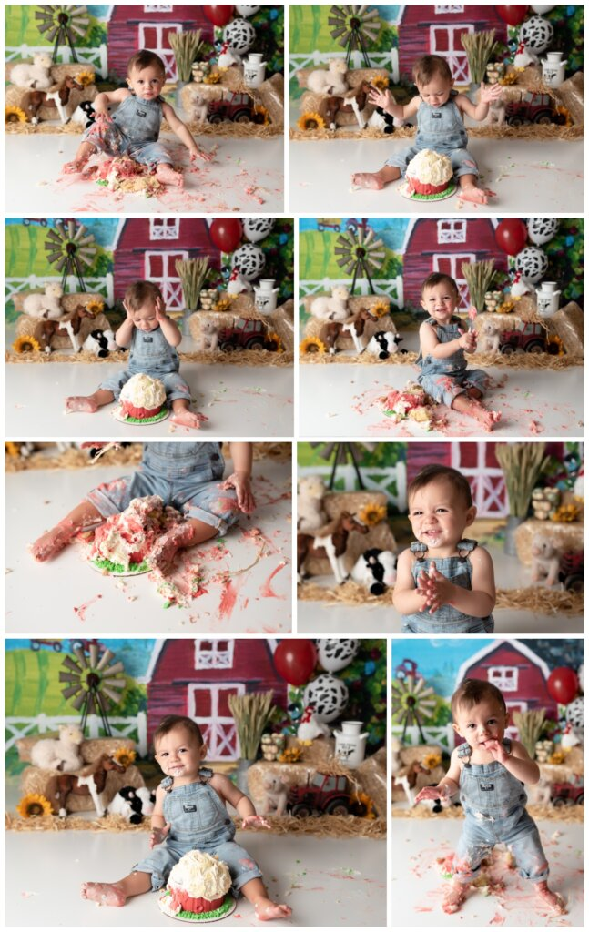 fun on the farm, cake smash session