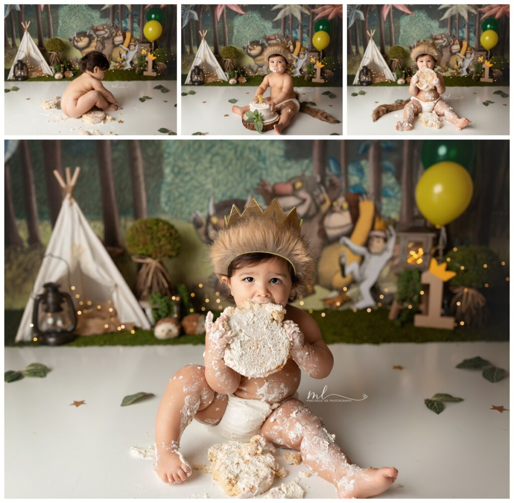 cake smash, wild one, where the wild things are, one year session